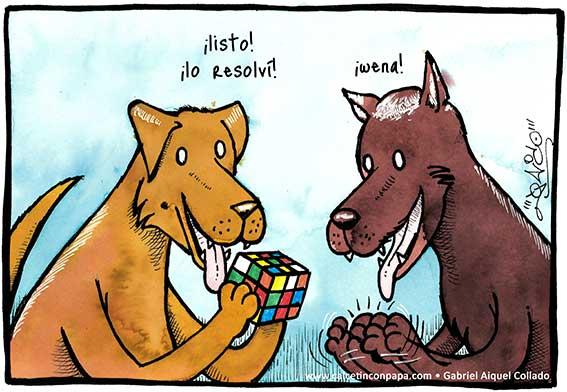 perro-rubik